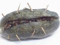 あけびの肉詰め ~Part2~