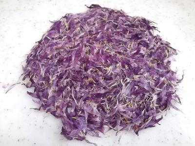 干菊 (紫)