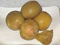 カリカリ梅 (酢)
