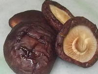 椎茸の燻製