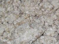 味噌用の麦麹の作り方