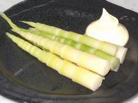 根曲竹のサラダ