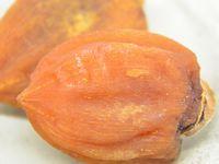 干し柿冷燻製