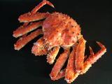 蟹を使ったレシピ