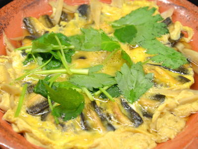 柳川鍋の画像 p1_10