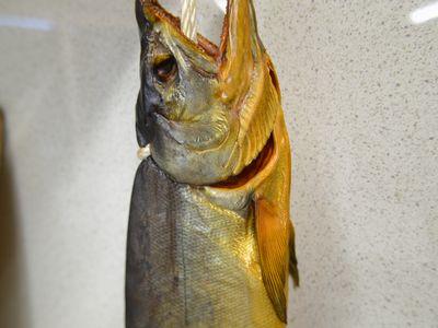 新巻鮭の燻製