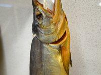 新巻鮭の冷燻製
