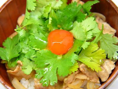 パクチー丼 (コリアンダー丼)