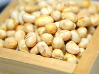 福豆(煎り豆、豆まき)